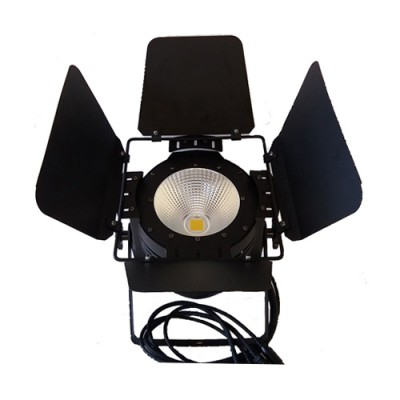 "LED "" Par Cob 100w 2in1"""